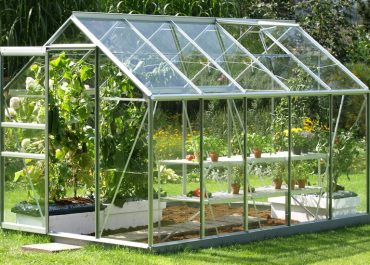 Reasons Why You Need Greenhouse