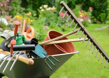 Top 10 Questions About Cleaning Your Garden Tools