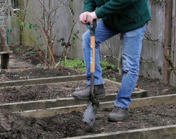 Soil in Winter