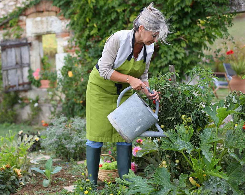 Main Health Benefits You Get from Gardening
