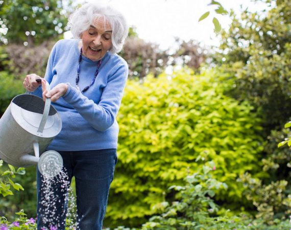 Gardening for Oldies